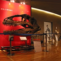 群馬県立自然史博物館《ツノ出せ、ツメ出せ、キバを出せ!展》会場・サイン 2003